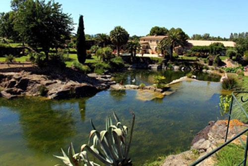 Le jardin de saint adrien thau info le journal du pays - Jardin de saint adrien ...